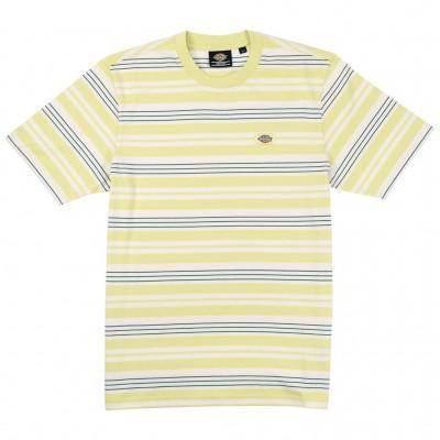 Dickies T-shirt Wheaton...