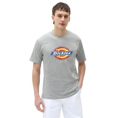 Dickies T-Shirt Icon Logo Grey